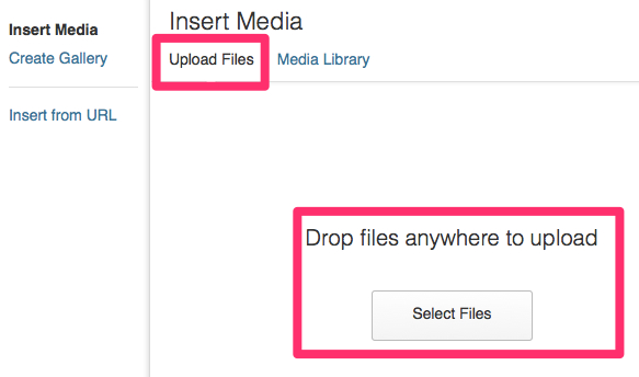 The Insert Media screen in WordPress.